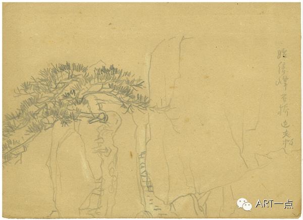 潘天寿写生作品欣赏及分析